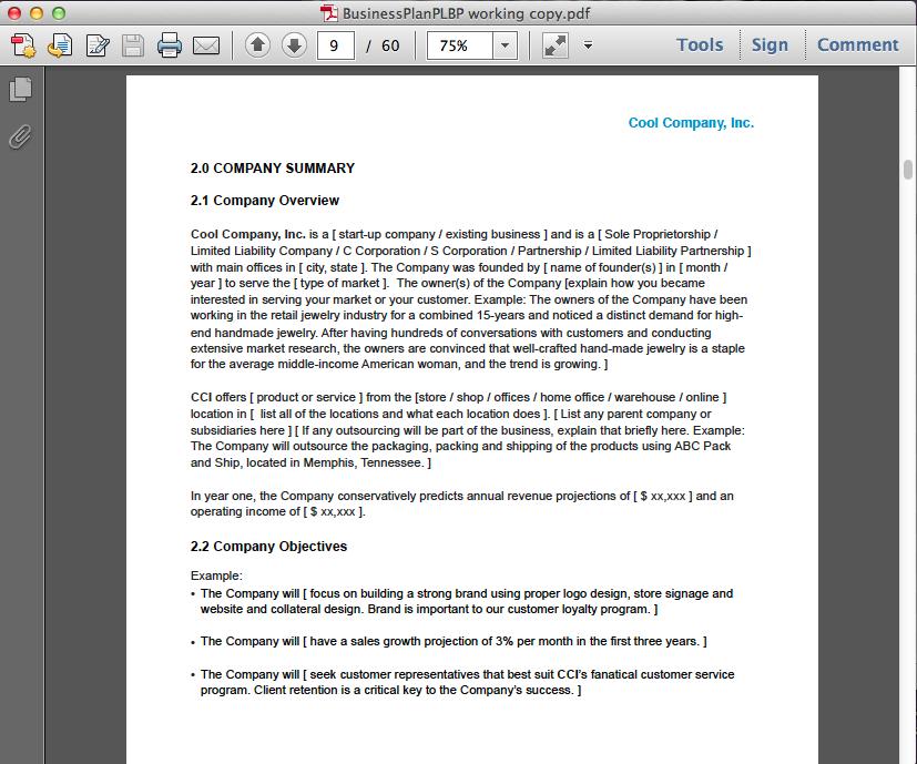 Business Plan Screenshots for PDF « Perfect Little Business